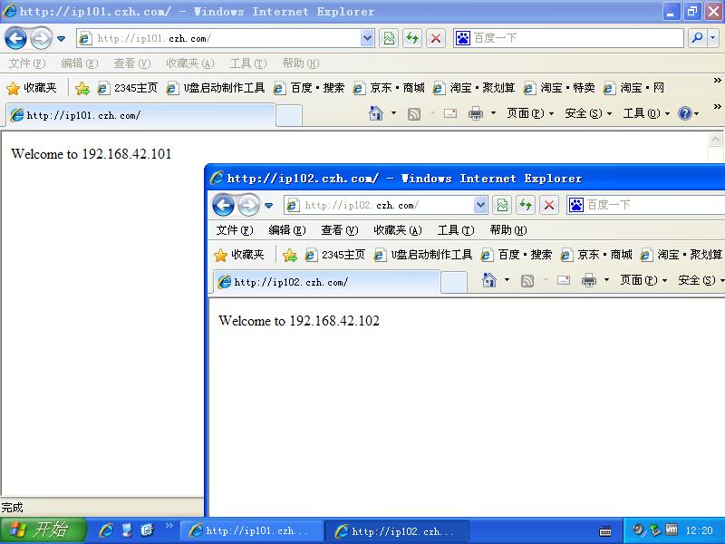 DNS/WEB客户端测试