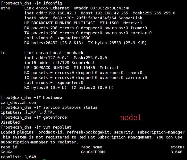 Linux——DNS服务器初始化配置